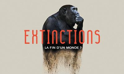 expo extinction.jpg